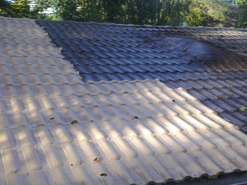 MOULD REMOVAL.     THE ROOF WAS CREAM.